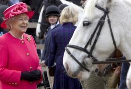 Královna Alžběta II. si sázením na koníčky vydělala 6,7 milionu liber (cca 240 milionů korun)